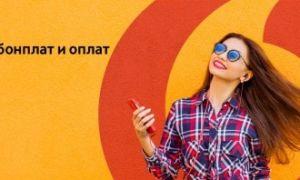 Услуга Водафон «Год без абонплат» – тарифы и подключение
